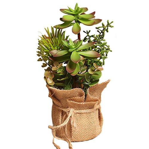 drawihi Blumen Topfpflanzen Künstliche Sukkulente Kaktus Dekorieren das Haus Green and Red 2514cm