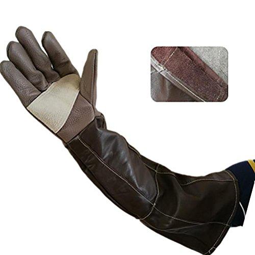 XYU Animal Handling Anti-BissKratzer Handschuhe für Hund Katze Vogel Schlange Papagei Eidechse Wildtiere Schutzhandschuhe