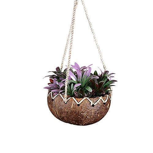 Hete-supply Übertopf Hängekorb Garden Deko-Kokosnuss-Schale zum Aufhängen Blume Blumentopf zum Aufhängen rund Blumentopf für Garten Balkon Terrasse Home Dekoration