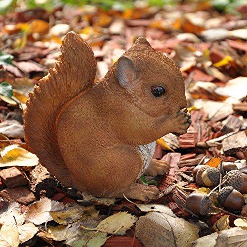 nanook Gartenfigur Tiere - Handbemalt Wetterfest Material Kunststein Polyresin - Baby Eichhörnchen
