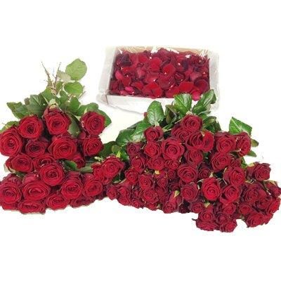 Blumenzimmer aus 80 roten Rosen - Blumenversand ROSENBOTEde