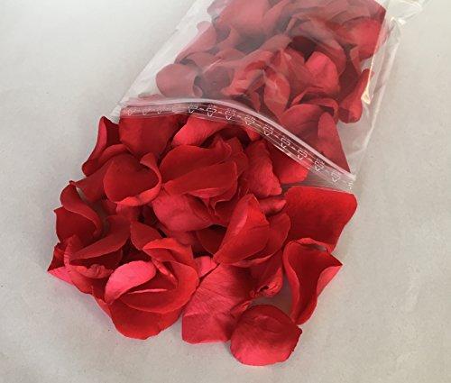 Decoflorales - Echte konservierte Rosenblätter Blütenfarbe rot - 25g