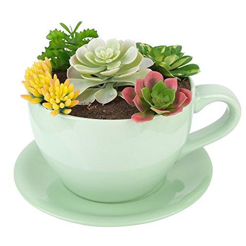 PureLifestyle Sukkulente Topf Keramik Blumen Pflanzen Kräuter Topf Groß Kaffeetassen-förmig Grün Size L