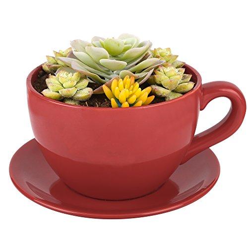 PureLifestyle Sukkulente Topf Keramik Blumen Pflanzen Kräuter Topf Size M Kaffeetassen-förmig Rot
