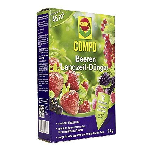 COMPO Beeren Langzeit-Dünger für alle Arten von Beeren sowie Obst  6 Monate Langzeitwirkung 2 kg 45m²