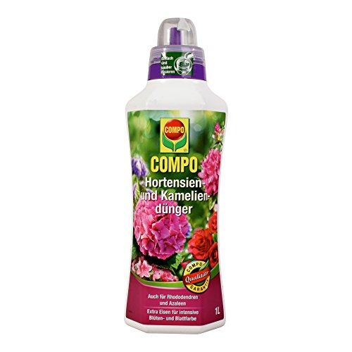 COMPO Hortensien- und Kameliendünger für alle Morbeetpflanzen im Haus auf Balkon und Terrasse sowie im Garten Spezial-Flüssigdünger mit extra Eisen 1 Liter