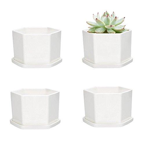 Mkouo 4er Set Keramik Weiß Sukkulenten Töpfe Hexagon Kaktus Pflanze Töpfe Mini Blumentöpfe mit Untersetzer Ø 10cm