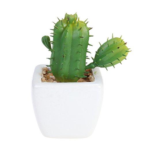 WINOMO Künstliche Sukkulenten Topfpflanzen Mini Fake Blumentopf für Indoor Outdoor Decor Kaktus mit Thorn
