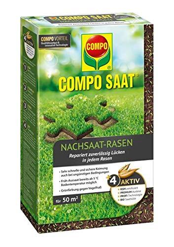 COMPO SAAT Nachsaat-Rasen 1kg Packung