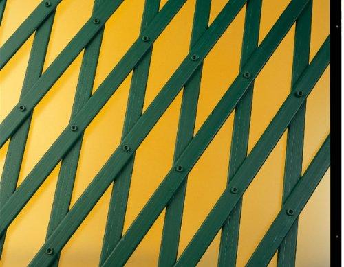 Catral Deutschland Rankgitter PVC ausziehbar 100 x 2 m grün 143 x 14 x 1 cm 43060003