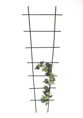 Kapelanczyk Rankhilfe Rankgitter Art307 Kletterhilfe aus Metall 65 cm Grün Steckzaun Zaun