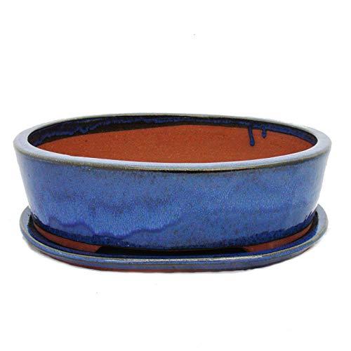Bonsai-Schale mit Unterteller Gr 5 - oval O1 - blau - L 31cm - B 24cm - H 9cm