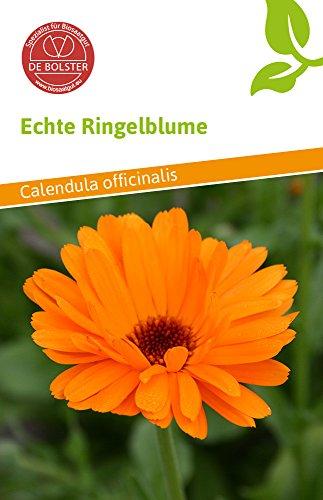 De Bolster 15130 Echte Ringelblume Bio-Ringelblumensamen