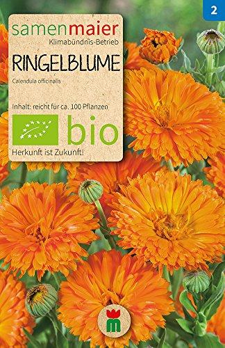 Ringelblume orange  Bio-Ringelblumensamen