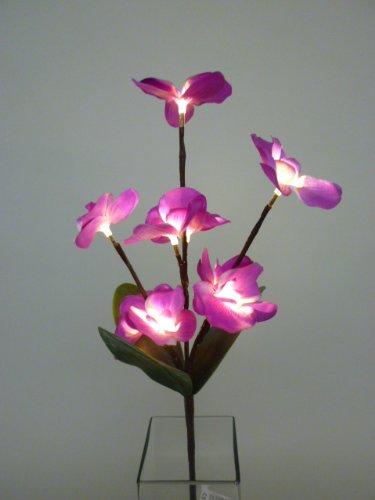 Dekozweig Orchidee 9 x LEDs warmweiss in lila Blüten auf Zweig Dekoleuchte Batterie betrieben