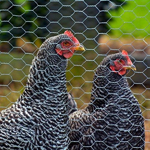 Sechseckgeflecht Hasendraht Hühnerdraht verzinkt 25x08mm 100cm hoch 5m Rolle
