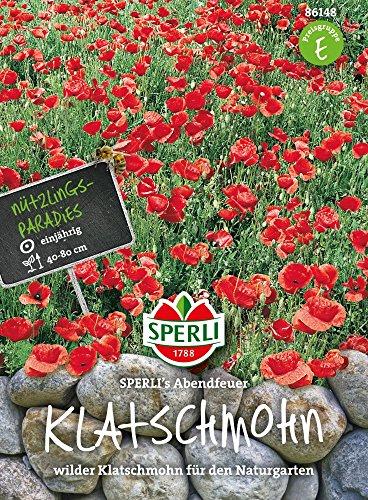 Sperli-Samen Mohn Wilder Klatschmohn