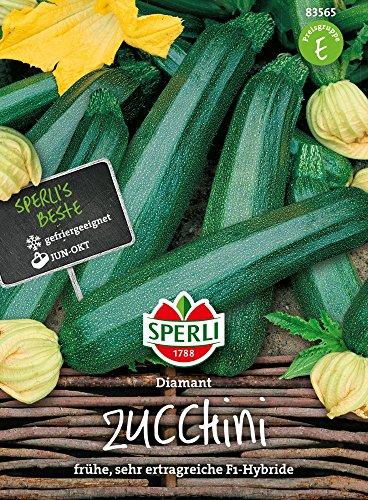 Sperli-Samen Zucchini Diamant F1 Hybride