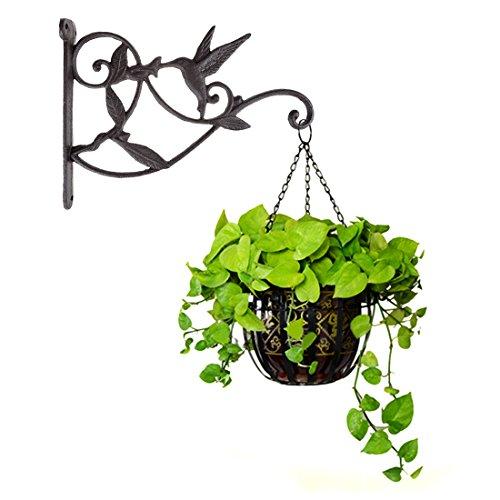 Dewel Pflanze Haken Zum Aufhängen Kolibri Gusseisen Deko Blumenkorb Wall Hanging Haken Halterung Aufhänger für Indoor Outdoor Pflanzen Futterhaus Laterne Pflanztöpfe Blumentöpfe Wind Chimes