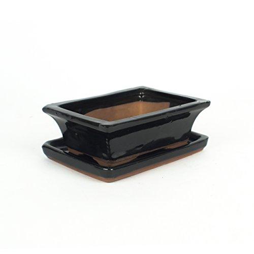 Inter Flowers - Bonsaischale SCHWARZ - L 14cm B10cm H5cm mit Untersetzer Keramik geflammt Indooroutdoor eckig  Unterteller hochwertig