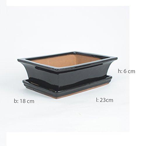 Inter Flowers - Bonsaischale SCHWARZ - L 23cm B18cm H8cm mit Untersetzer Keramik geflammt Indooroutdoor eckig  Unterteller hochwertig