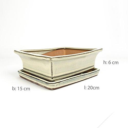Inter Flowers - Bonsaischale WEISS - L 20cm B15cm H6cm mit Untersetzer Keramik geflammt Indooroutdoor eckig  Unterteller hochwertig