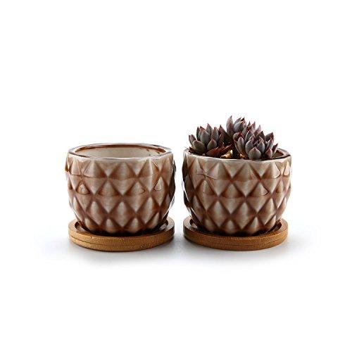 T4U 83CM Sukkulenten Töpfe Keramik Kaktus Pflanze Töpfe Blumentöpfe mit Bambus-Untersetzer 2er Set - Klein Braun Haus und Büro Desktop Dekoration Geschenk für Hochzeit Geburtstag Weihnachten