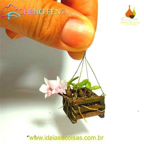 100 Stück Mini Bonsai Orchideensamen Innen Zuhause Miniatur-Blumen-Pflanzen-Topf Samen Garten Diy Pflanze Sementes 2016 Seltene Blumen-Geschenk-Violett