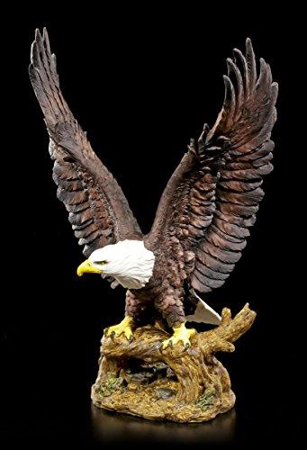 Adler Gartenfigur - Weißkopf-Seeadler mit ausgebreiteten Flügeln  Statue Garten Figur Deko